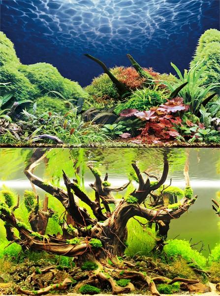 0,6m Rückwand-Folie 30cm hoch, Green Secret / Wood Island #Nr. 26