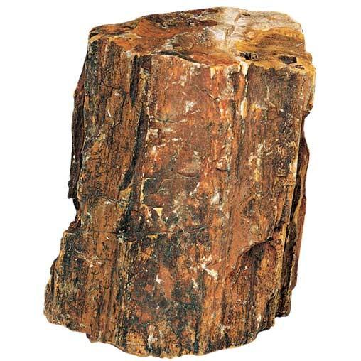 Steinholz Größe L Stein Deko für Aquarium / Terrarium